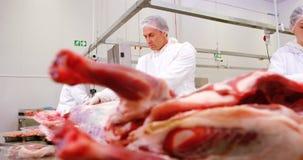 Team van slagers het werken stock video