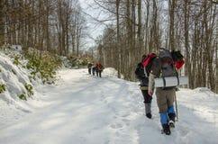 Team van wandelaars in de winterbos Royalty-vrije Stock Afbeeldingen
