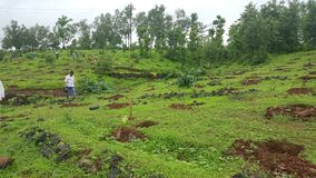 Saving environment and mountains to save earth
