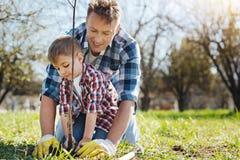 Team von zwei männlichen Familienmitgliedern, die zusammen im Garten arbeiten lizenzfreies stockfoto