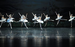 A team of white swan-ballet Swan Lake Stock Images