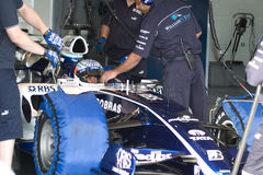Team Williams F1, Narain Karthikeyan, 2006 Royalty Free Stock Photos