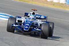 Team Williams F1, Alex Wurz, 2006 Royalty Free Stock Photos