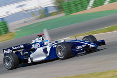 Team Williams F1, Alex Wurz, 2006 Stock Photo