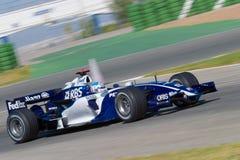 Team Williams F1, Alex Wurz, 2006 Stock Photo
