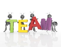 The team word with 3d cartoon ants Royalty Free Stock Photos