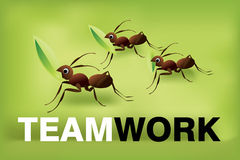 Team work 02 Royalty Free Stock Image