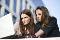 Team work. Beautiful young females working on laptop outside Royalty Free Stock Photo
