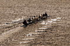 Team Work. Young women athletes rowing boat in a river Royalty Free Stock Photo