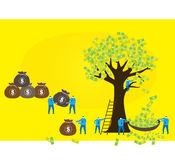 Team work: money tree. All businessman are busy in making money from a money tree Stock Images