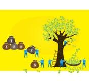 Team work: money tree Stock Images