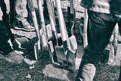 Team of workers ready to start planting trees with their shovels, teamwork concept stock photography