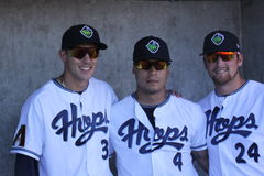 Teammates. William Castillo,Elvin Soto & Randy McCurry ,,three teammates of the 2013 Hillsbro Hops baseball club Stock Image