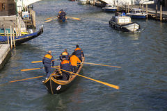 Teams of rowers (Venice) Stock Images