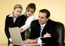 Teamwork. Business woman analyzing facts along with her team Royalty Free Stock Photography