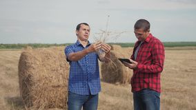 Teamwork agriculture smart farming concept. two men farmers workers studying a lifestyle haystack in field on digital stock video footage