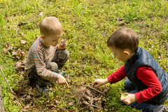 Teamwork as two young boys build a fire Stock Photos