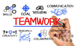 Teamwork concept chart with business elements. Hand drawn on whiteboard Stock Photography