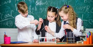 Teamwork concept. Test tubes with colorful liquid substances. Study of liquid states. Group school pupils study chemical royalty free stock images