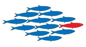 Teamwork, Führer, Fischschwarmvektorillustration Lizenzfreie Stockbilder