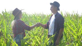 Teamwork happy family smart farming concept slow motion video. Girl and man shake hands meeting business contract. Agronomist holds digital tablet touch pad stock video