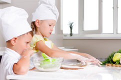 Teamwork in the kitchen Stock Image