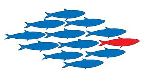 Teamwork, leader, School of fish vector illustration. School of fish with a leader vector illustration Royalty Free Stock Images