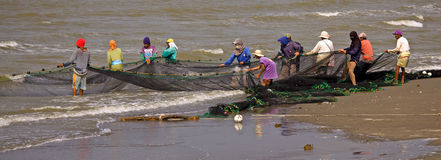 Teamwork Net Fishing Royalty Free Stock Images