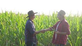 Teamwork smart farming husbandry concept slow motion video. Two men agronomist two farmers victory shake hands teamwork stock video