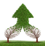 Teamwork Success. And working together as a business symbol and financial merger concept with two trees connecting and merging as one forming a healthy growing Stock Photography