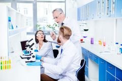 Teamwork and teambuilding concept. A group of three scientists i. Team building concept. A group of scientists are discussing their researches in the bright lab Royalty Free Stock Photos