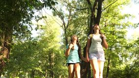 Teamwork tourists teenagers. happy girls travelers go with backpacks in the forest. Hiker woman walks in the forest stock footage