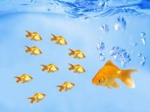 Teamwork und Führung Stockfoto