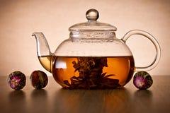 Teapot και γυαλιού φλυτζάνι με το ανθίζοντας λουλούδι τσαγιού Στοκ Εικόνες