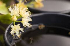 Teapot και το φλυτζάνι με το τσάι Στοκ Φωτογραφίες