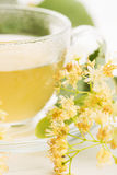 Teapot και το φλυτζάνι με το τσάι Στοκ Εικόνες