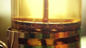 Teapot με το φρέσκο τσάι σε σε αργή κίνηση στο υπόβαθρο ήλιων 1920x1080 απόθεμα βίντεο