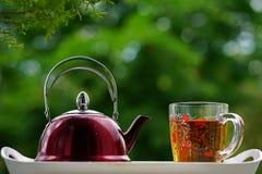 Teapot χρόνος τσαγιού γυαλιού τσαγιού Στοκ Εικόνες