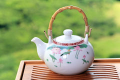 Teapot. China teapot on green background Stock Image