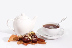Teapot. A cup of tea and a teapot with autumn foliage on bright background Stock Images