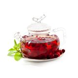 Teapot. Berries Tea with Fresh Mint stock photography
