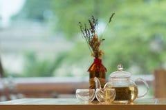 Teapot chinês Imagens de Stock