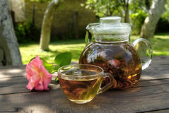 Teapot with Chinese tea Stock Image