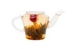 Teapot com chá verde Foto de Stock
