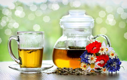 Teapot and cup of herbal tea Stock Image