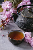 Teapot and cup of tea with blossom branch Stock Image