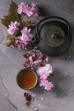 Teapot and cup of tea with blossom branch Stock Photography