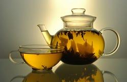 Teapot e copo de chá de vidro Fotos de Stock