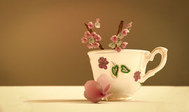Teapot with flowers Royalty Free Stock Photo