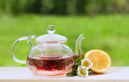 Teapot with fragrant herbal tea on a background of nature lemon Royalty Free Stock Images
